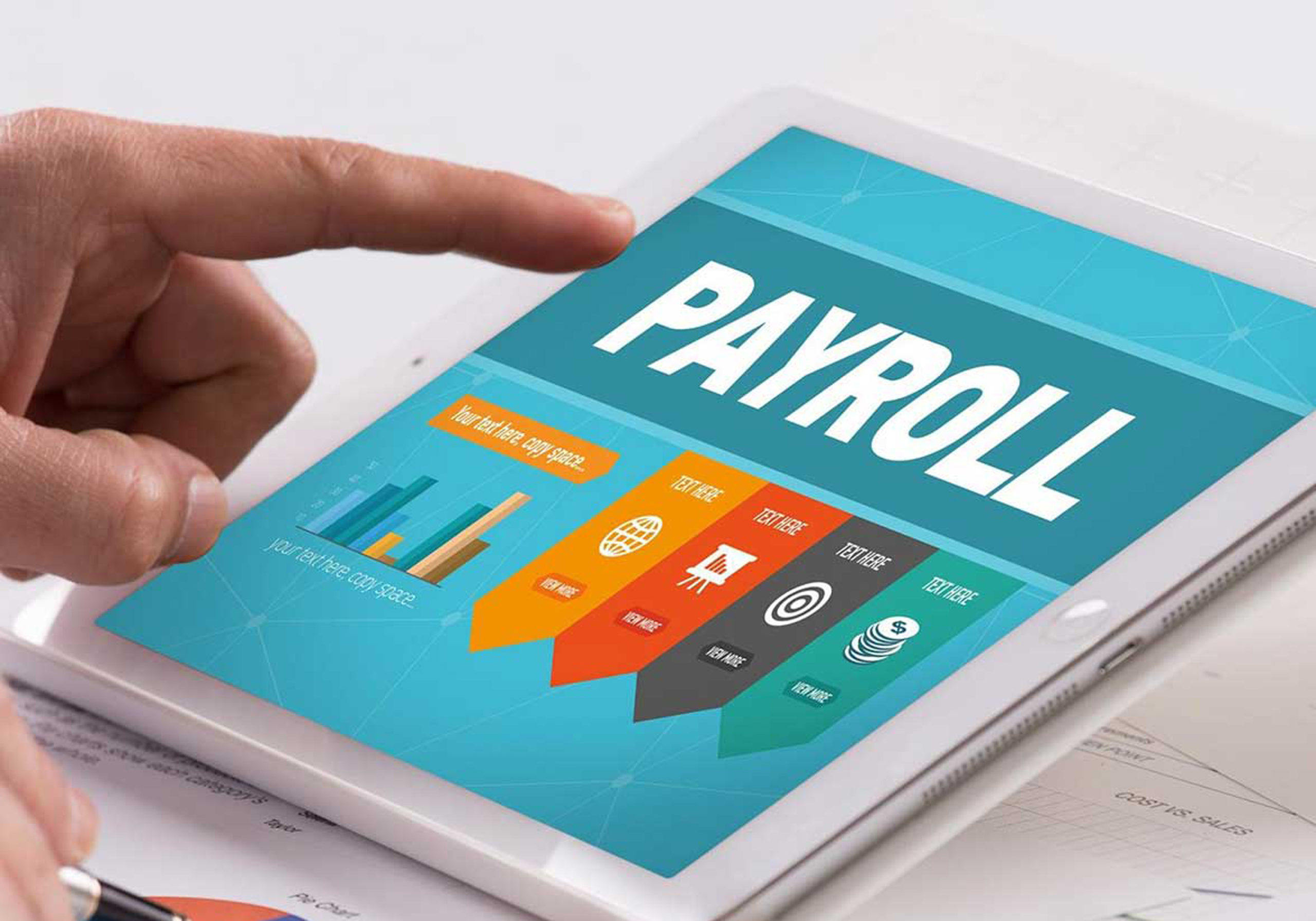 Payroll Outsourcing Companies – What You Need to Know About Pricing and Profit